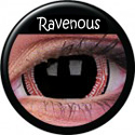 Mini-Sclera Ravenous
